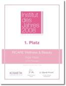 Urkunde Institut 2008